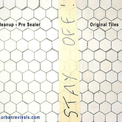 Encaustic tile repair