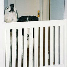 Buy a wood pet or baby gate